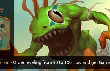 Leveling 90-100