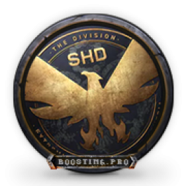 Division 2 Charecter Leveling Icon